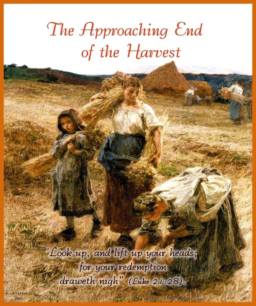 David Rice - End of Harvest - verse- border