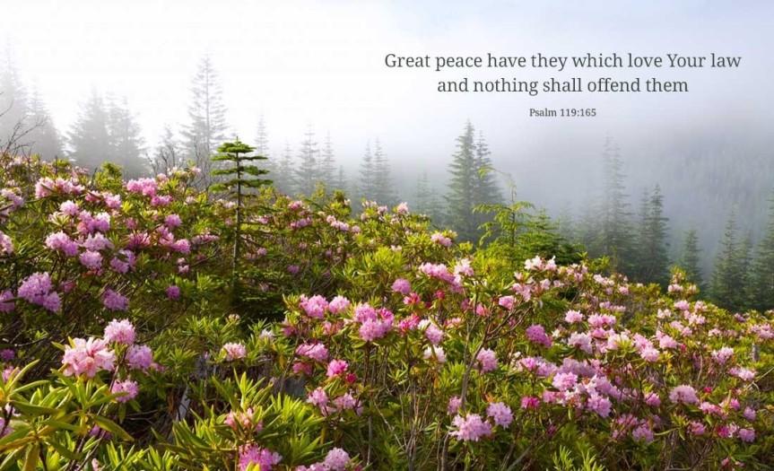 PSALM 119,165.jpg