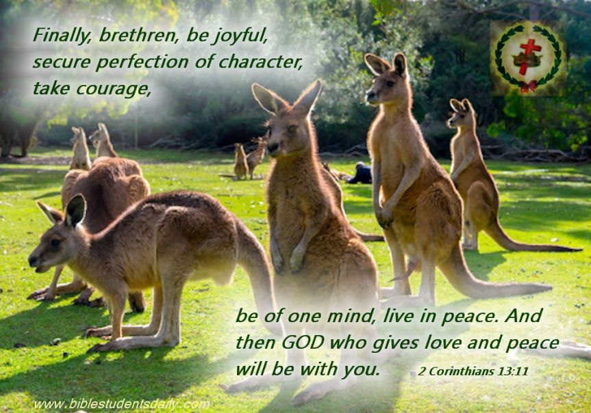 Internal Peace, External Unity.jpg