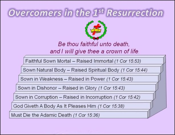 Overcomers in the 1st resurrection.jpg