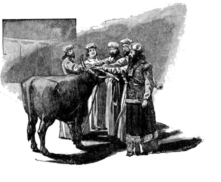 lev 8 - aaron and his sons laid their hands upon the bullock.jpg