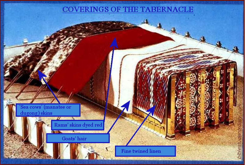 Image result for tabernacle curtains