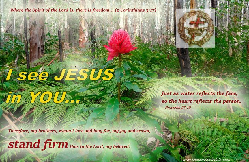 I see Jesus In You & b.jpg