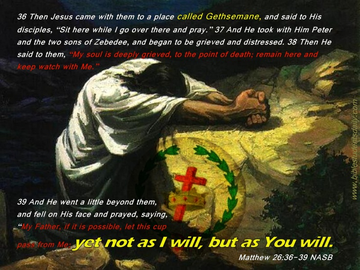 Jesus in Gethsemane.jpg