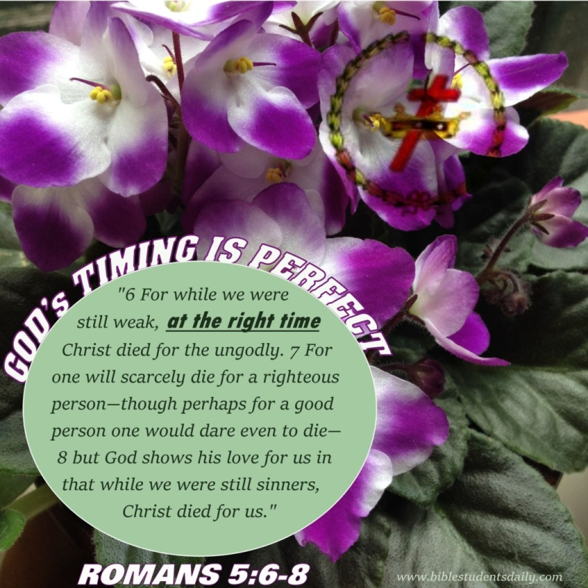 Romans 5, 6-8